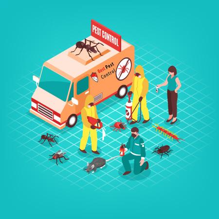 Pest Control BD